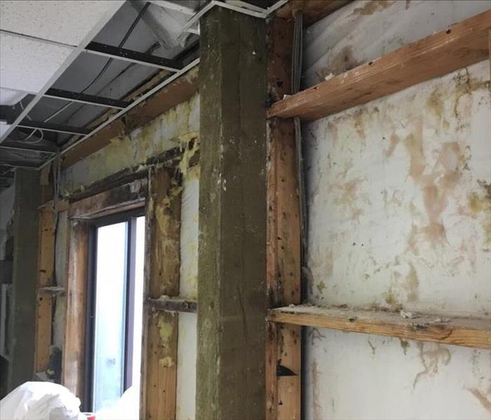 Mold Remediation at a commercial building in Aurora, OR Before